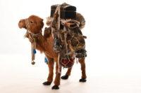 Zubehör für Weihnachtskrippen, Atelier M.& M. Oechslin